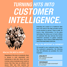 Print design: Customer Intelligence factsheet